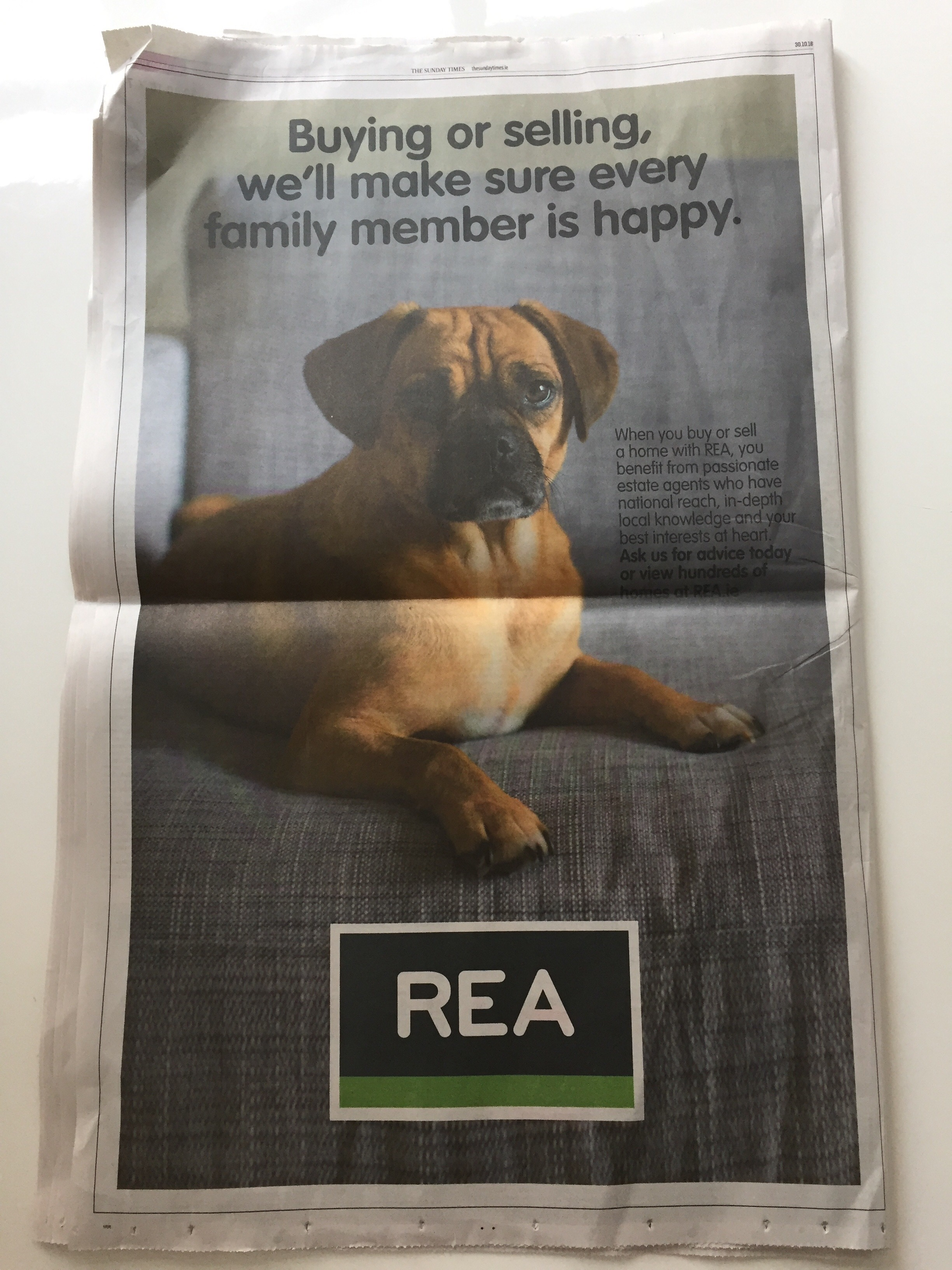 REA Real Estate Alliance – buying or selling, we'll make sure every family member is happy