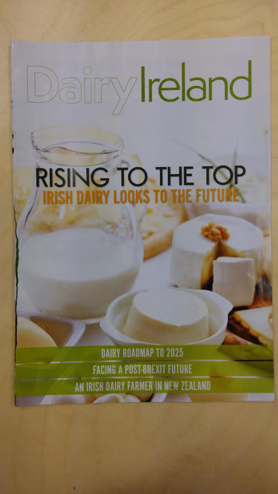 Rising to the top – Irish dairy looks to the future
